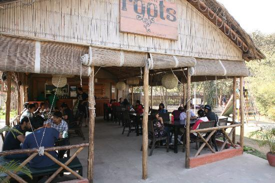 gurgaon cafe roots
